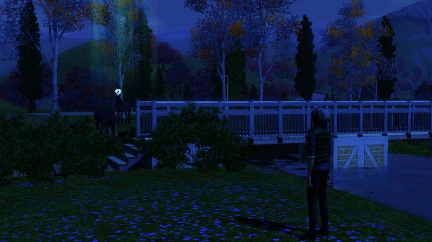 screenshot-3242